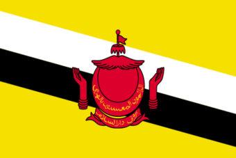 Brunei vlag