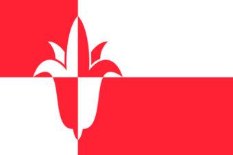 Gemeente Bernheze vlag