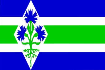 Gemeente Blaricum vlag