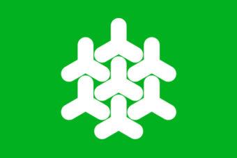 Gemeente Dronten vlag