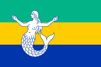 Gemeente Eemsmond vlag