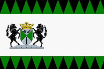Gemeente Emmen vlag