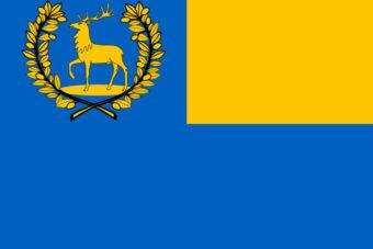 Gemeente Epe vlag