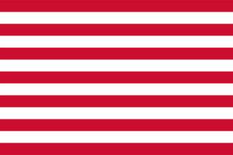 Gemeente Goes vlag