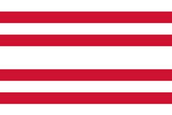 Gemeente Gorinchem vlag