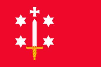 Gemeente Haarlem vlag