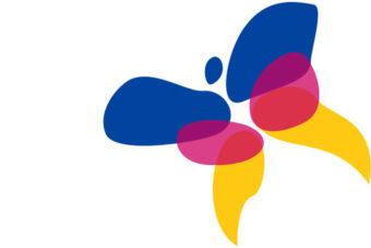 Gemeente Lingewaard vlag