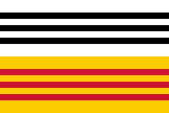 Gemeente Loon op Zand vlag
