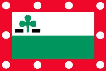 Gemeente Meppel vlag