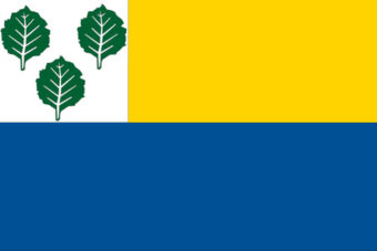 Gemeente Olderbroek vlag