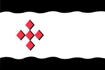 Gemeente Peel en Maas vlag