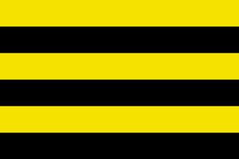 Gemeente Schiedam vlag