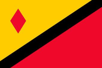 Gemeente Stein vlag