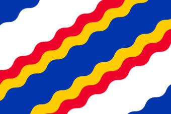 Gemeente Ten Boer vlag