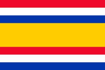 Gemeente Tholen vlag
