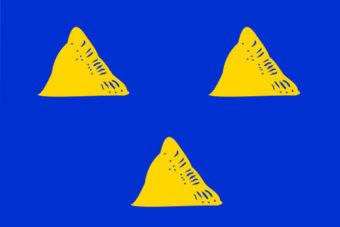 Gemeente Tubbergen vlag