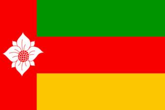Gemeente Tynaarlo vlag