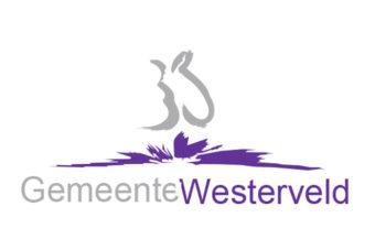 Gemeente Westerveld vlag