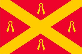 Gemeente Wijchen vlag