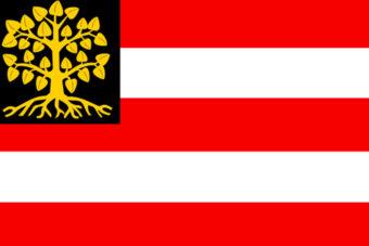Gemeente 's-Hertogenbosch vlag