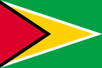 Guyana vlag