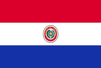 Parguay vlag