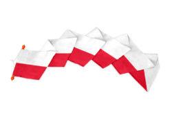 Polen Wimpel