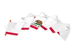Wimpel Californië