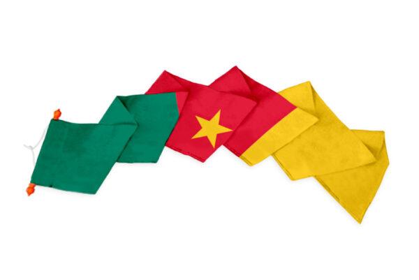 Wimpel Kameroen