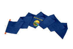 Wimpel Montana