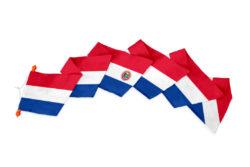 Wimpel Paraguay