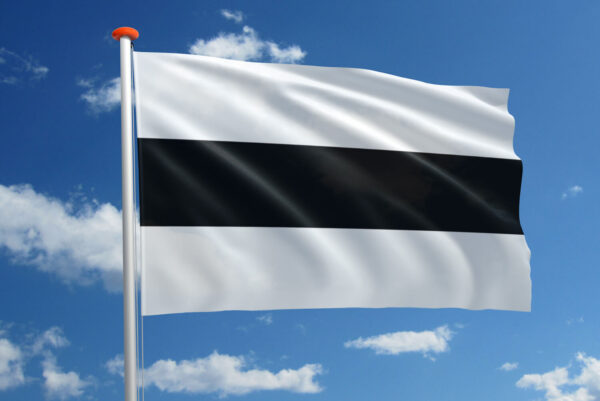 Vlag Delft