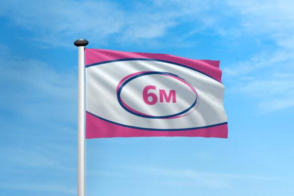 Polyester vlag mast 6 meter
