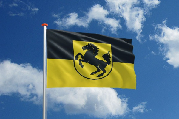 Wereldsteden vlaggen